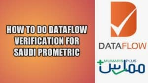 dataflow for Saudi Prometric exam nurses