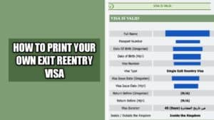 How to print your own exit reentry visa online very fast