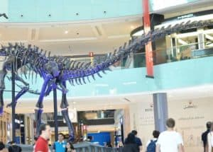 Top 10 things you will love in the Dubai mall