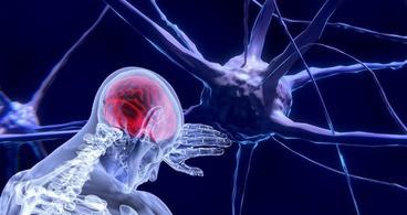 neurosurgery saudi licencing examination